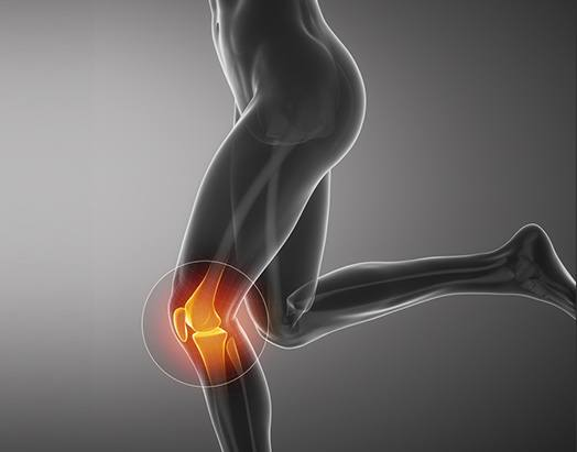 Knee Service at Benjamin Young, M.D. Orthopedic Surgeon Adult Hip & Knee Joint Reconstruction